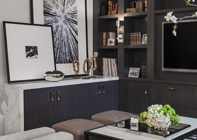 Masculine Modern Livingroom